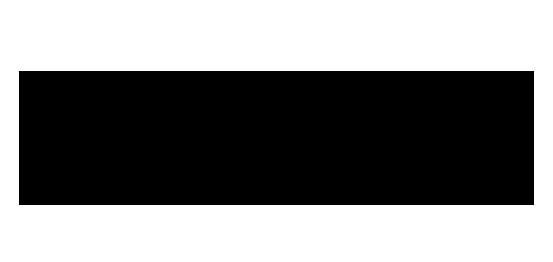 sonnier castle logo